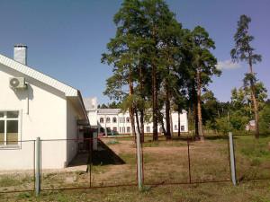 Лухская больница