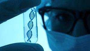 вред алкоголя для ДНК