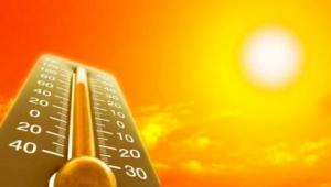 аномально-жаркая погода