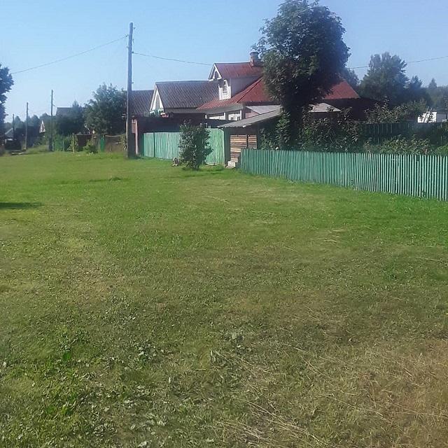Утро в деревне Бабино! Населенный пункт привлекает своей чистотой.